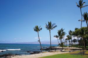 マウナラニビーチ  ホテルのビーチにはウミガメも訪れます。