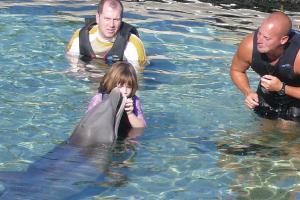 【ドルフィン・クエスト】 イルカとの触れ合いは一生の思い出に!