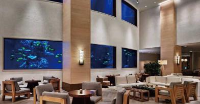 海底のサンゴ礁を表現したレセプションの壁